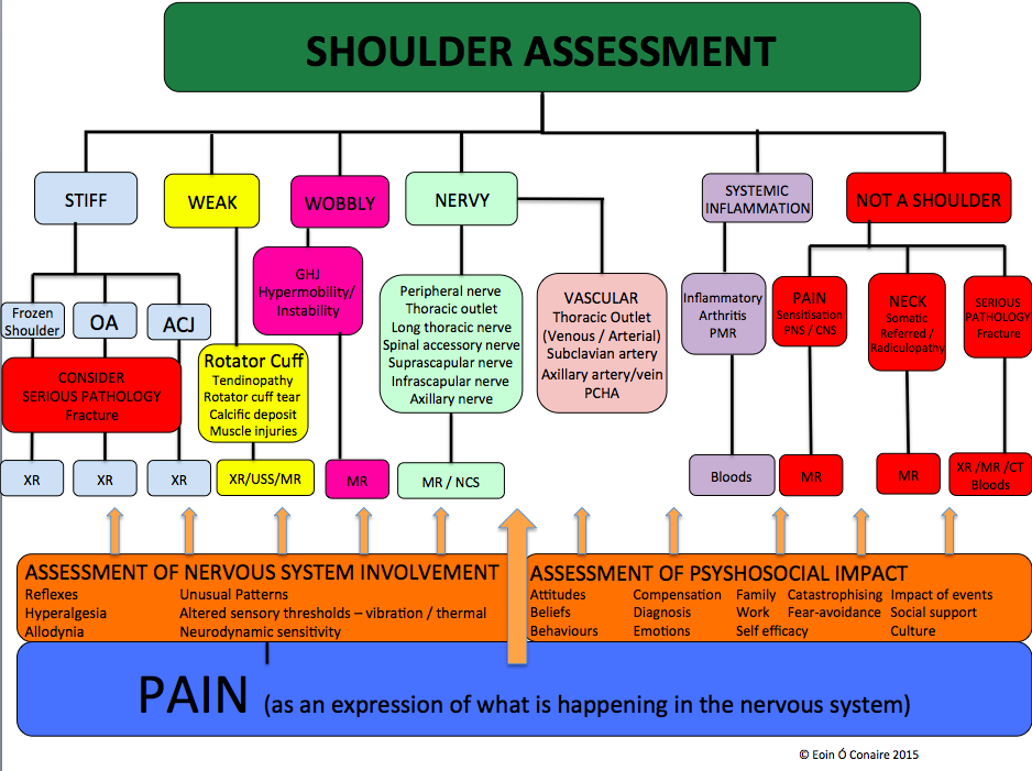 Eoin Ó Conaire's clinical reasoning model of the shoulder