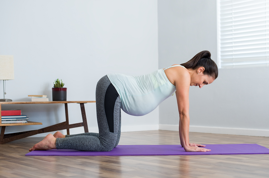 Pregnant young woman in all fours position exercising during pre